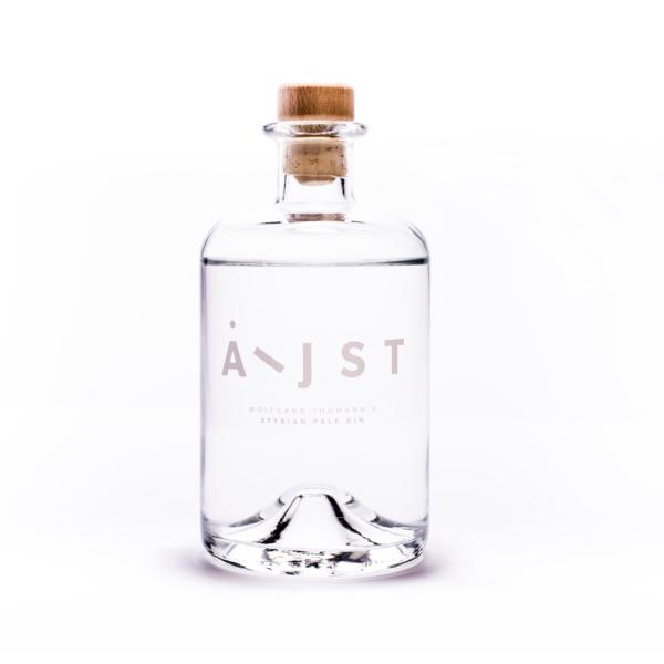 aeijst-gin
