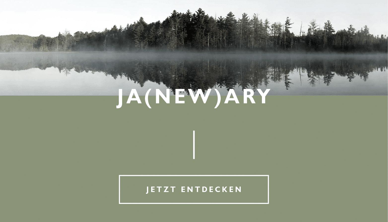 JaNEWary 2020