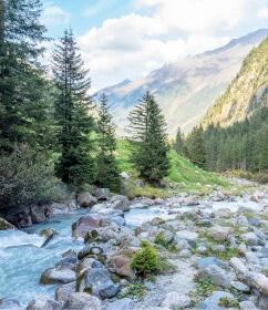 Alpine Organics - Tiroler Bergquellwasser Landschaft